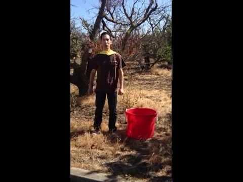 Beau-coup CEO takes on the ALS ice bucket challenge.