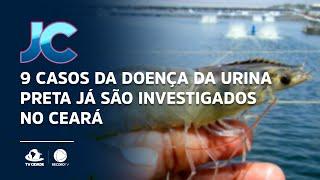 9 casos da doença da urina preta já são investigados no Ceará