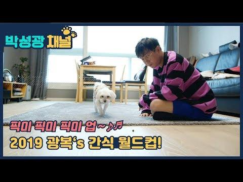 [박성광채널] 픽미 픽미 픽미 업~ ♪♬ 2019 광복's 간식 월드컵!