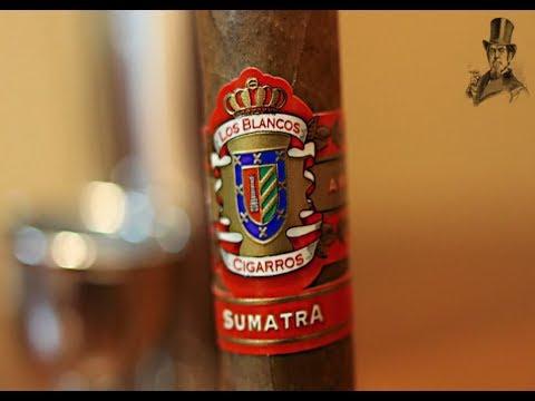 Blanco Sumatra Cigar Review - Blanco Cigars