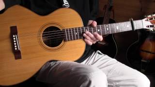 Fingerpicking Blues Lesson Betty and Dupree Blues-Willie Walker