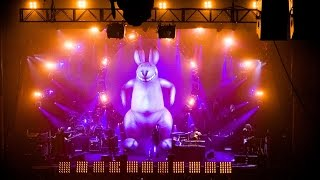💜The Australian Pink Floyd Show 💚 Live at The Royal Albert Hall (2007)💜
