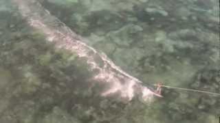 Kitesurfing Zanzibar 02/2013 - Spot Nungwi a nord di Zanzibar