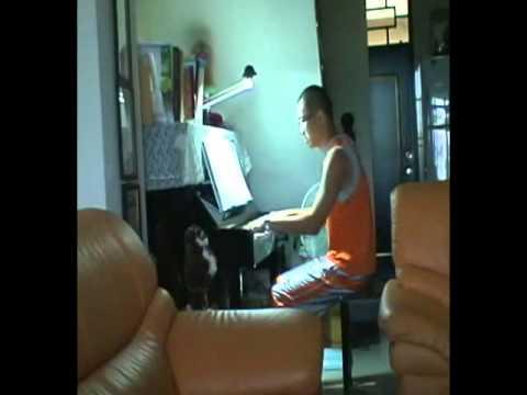 殷正洋-人海中遇見你(Piano).wmv
