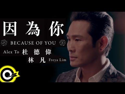 杜德偉 Alex To&林凡 Freya Lim【因為你 Because of you】Official Music Video HD (三立都會台「就是要你愛上我」插曲)