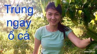 CÂU NGAY Ổ CÁ RÔ BÀNH CHẢN, GẶP CÔ CHỦ VƯỜN XINH ĐẸP //Go fishing, meet beautiful girl