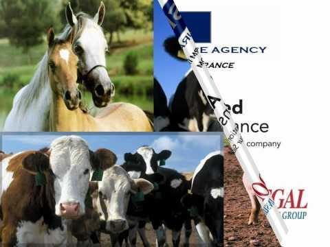 SIA Farm Insurance