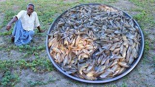 1000 Sea Fish Curry Recipe   Traditional Small Fish Recipe by Grandpa Kitchen