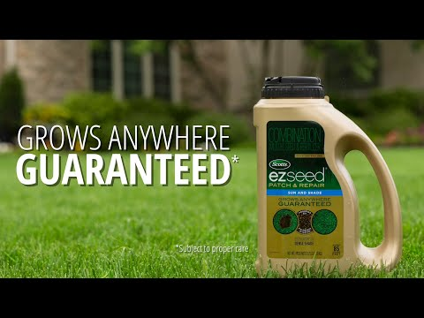 How to Fix Bare Spots in Your Lawn