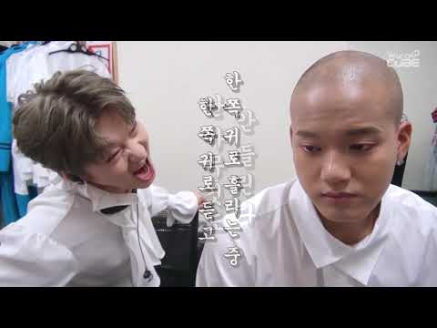 How normal is BTOB 비투비  (Part 1)