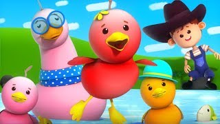 Funny Little Ducks | Little Eddie Videos For Toddlers