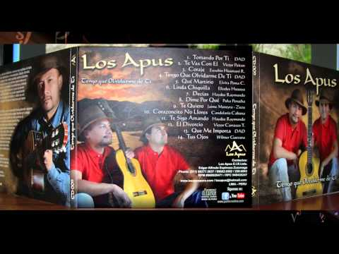 LOS APUS - PRIMICIA 2014 - TOMANDO POR TI