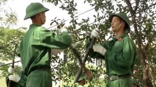 DVD Đoàn Nghi Lễ Quân Đội (2)