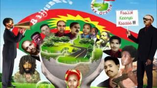 Guyyaa Gootota Oromoo Ebla 15 Ilaalchisee Wallee Haaraa Hawwisoo Qeerroon Qindaawe