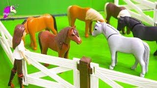 Summer Job ! Spirit Riding Free Playmobil Pony Sitters Part 1