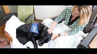 Therapy Dogs Lift Duke Patients' Spirits video