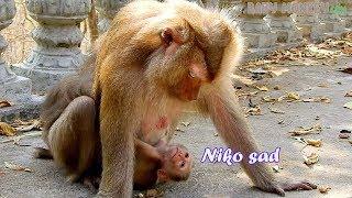 Poor mom Nissa still concern baby Niko cuz he look so weak-Nissa use eye talk comfort baby Niko