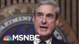 Is President Donald Trump Scared To Sit Down With Robert Mueller? | Morning Joe | MSNBC