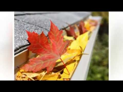 How Leaf Protection System Protects Your Home