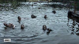 The Walking Dead Midseason Finale: Zombie Pond Official Teaser
