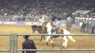 Houston Rodeo 2016 Highlights