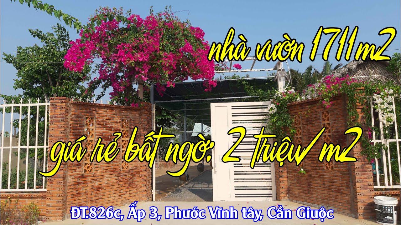 (Chính chủ) bán nhà vườn đường ĐT 826C, DT 1711m2, giá 2tr/m2, thương lượng. LH 0938 833 252 video