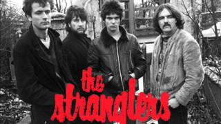 The Stranglers Live 21.11.1977 The Roundhouse London (Audio Concert)