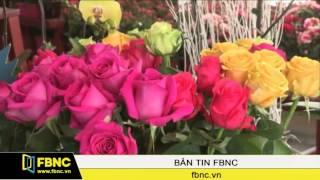 FBNC - Đà Lạt: Thị trường hoa 20/10 kém sôi động