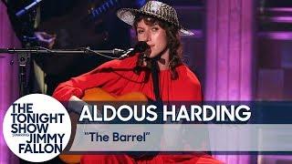 Aldous Harding: The Barrel