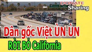 D,â,n g,ố,c Việt Ù,N Ù,N R,Ờ,I B,Ỏ CALIFORNIA  - Donate Sharing