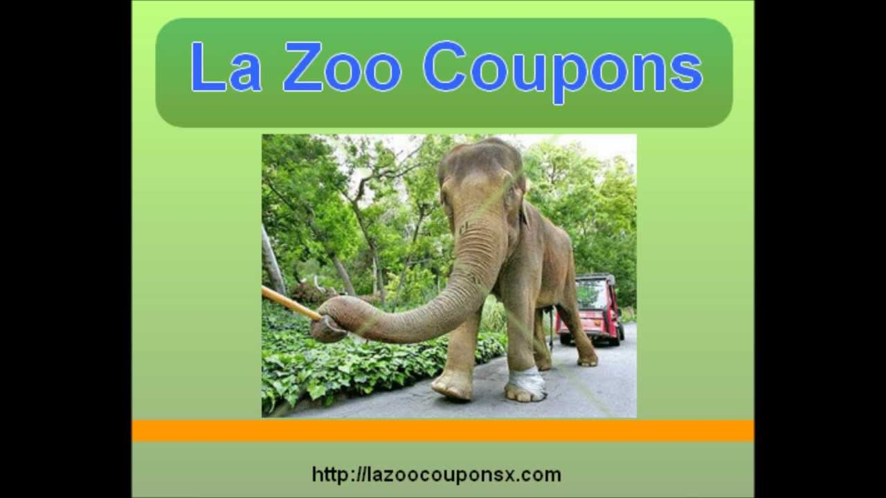 La zoo discounts coupons