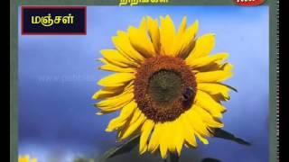 வடிவங்கள் (Shapes) | நிறங்கள் (Colors) | Tamil Nursery Rhymes & Lessons for Kids | Easy to Learn