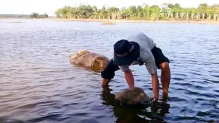Khi thánh nhọ đi câu lươn
