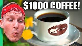 $1 Coffee VS $1000 Weasel Poop Coffee - Da Lat, Vietnam