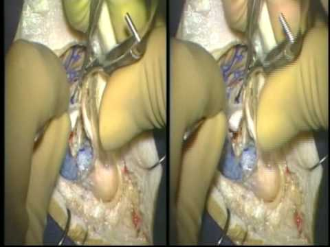 3D Medical-Surgical + Animation Sampler SxS