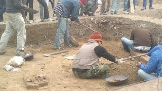 Archaeologists in India Unearthed 4, 500-Year-Old Skeletal Remains That Reveal Ancient Secrets