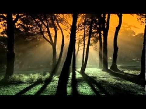 Baixar ♫ Em paz ♫ -  Maria Gadú -  By Fran Batan