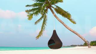 5.2K RELAX ON THE MALDIVIAN BEACH IN THE HANGING CHAIR