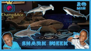 SHARK WEEK Deep Sea Fishing For GREAT WHITES, baby Sharks and OTHERS!!!!