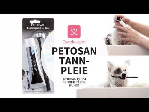 Produktvideo av Petosan Mikrofiber Tannbørste