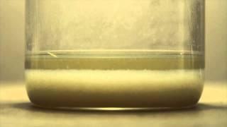 Potassium Carbonate to Potassium Hydroxide