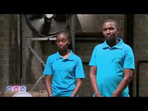 Lions Den Kenya - TOLETTA