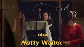 Natty Wailer - DESTINY