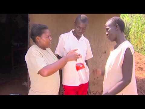dlight Shamba ShapeUp 8 Risper's Farm, Maseno