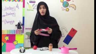 Living Things and Non-living Things - Grade 1 2 3 Science Videos for Children