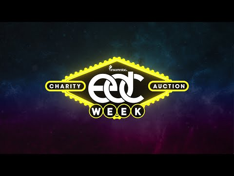 EDC Week 2016 Charity Auction