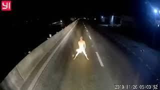 Xem Ngáo đá chặn đầu xe giữa đêm
