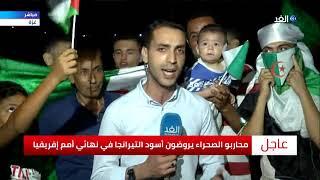 غزة.. احتفالات بـ «محاربي الصحراء» بالتتويج بكأس الأ ...