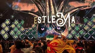 Wrestlemania 34 My View Seth Rollins Entrance