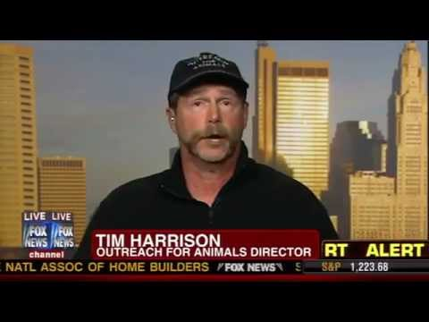 Fox news zanesville ohio exotic animal tragedy the - Watch the elephant in the living room ...